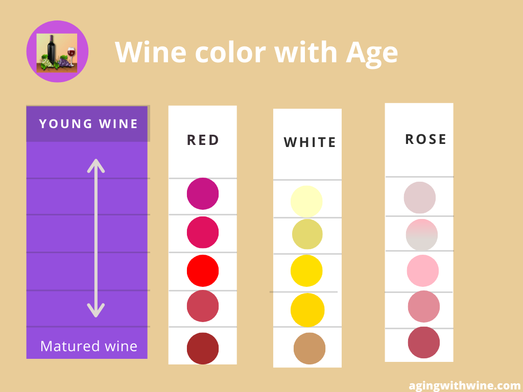 wine color by aging